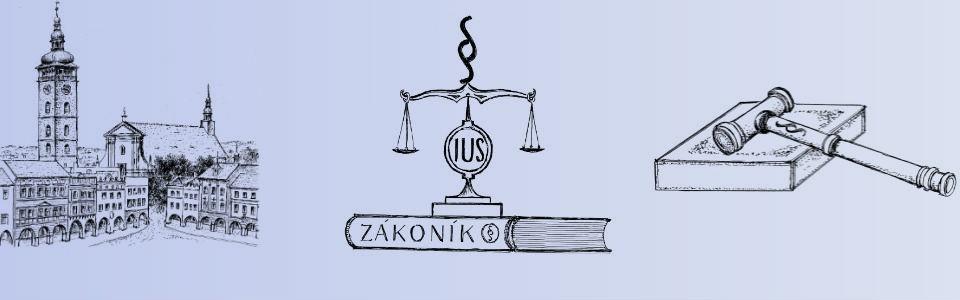 Zastupování v řízeních před soudy a jinými orgány veřejné moci